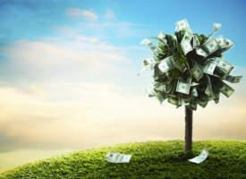 Tages- oder Festgeld – So treffen Sie die richtige Entscheidung