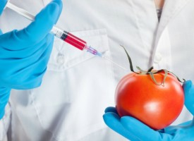 Der Monsanto-Bayer-Deal, welche Auswirkungen hat er auf Europa und den Rest der Welt?