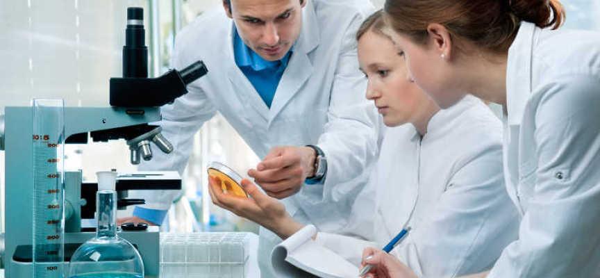 Medizintechnik: Deutschland bleibt ein Exportland