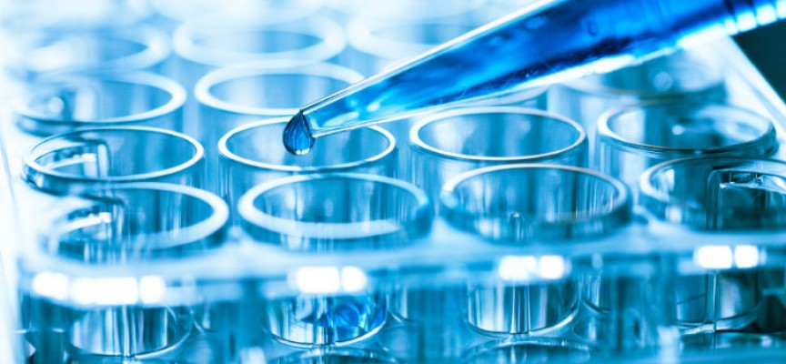 Life Science und Biotech Branche: Wachstumsraten und Gewinnaussichten