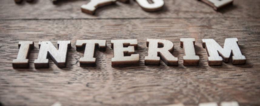 Interim Manager – Management auf Zeit