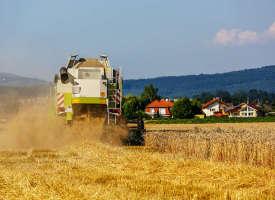 Subventionen für Landwirtschaft und erneuerbare Energien – langfristig wirklich sinnvoll?